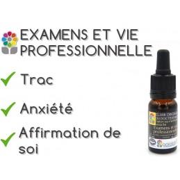 Elixir composé EXAMENS ET VIE PROFESSIONNELLE
